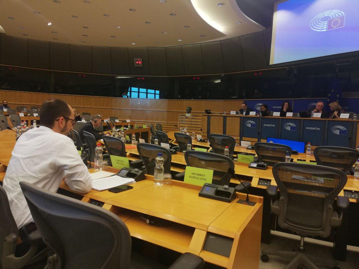 Xabier Benito Ziluaga (de espaldas) expone su informe sobre Guatemala a la Comisión de Asuntos Exteriores del Parlamento Europeo. (Foto: @xabierbenito).