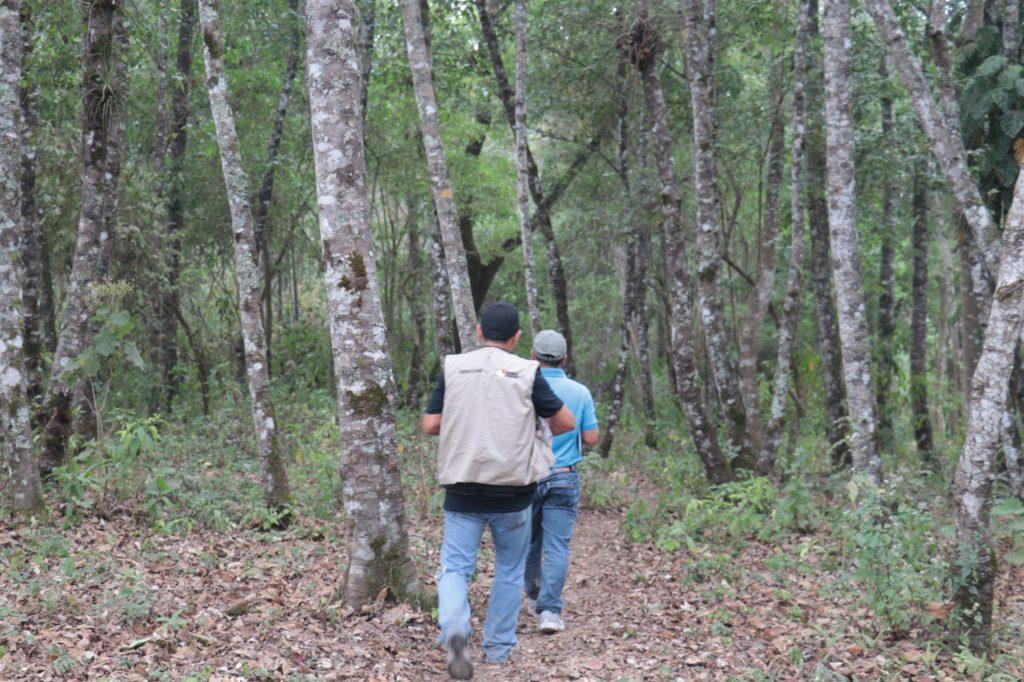 Uno de los ingresos al cerro de San Juan La Laguna.