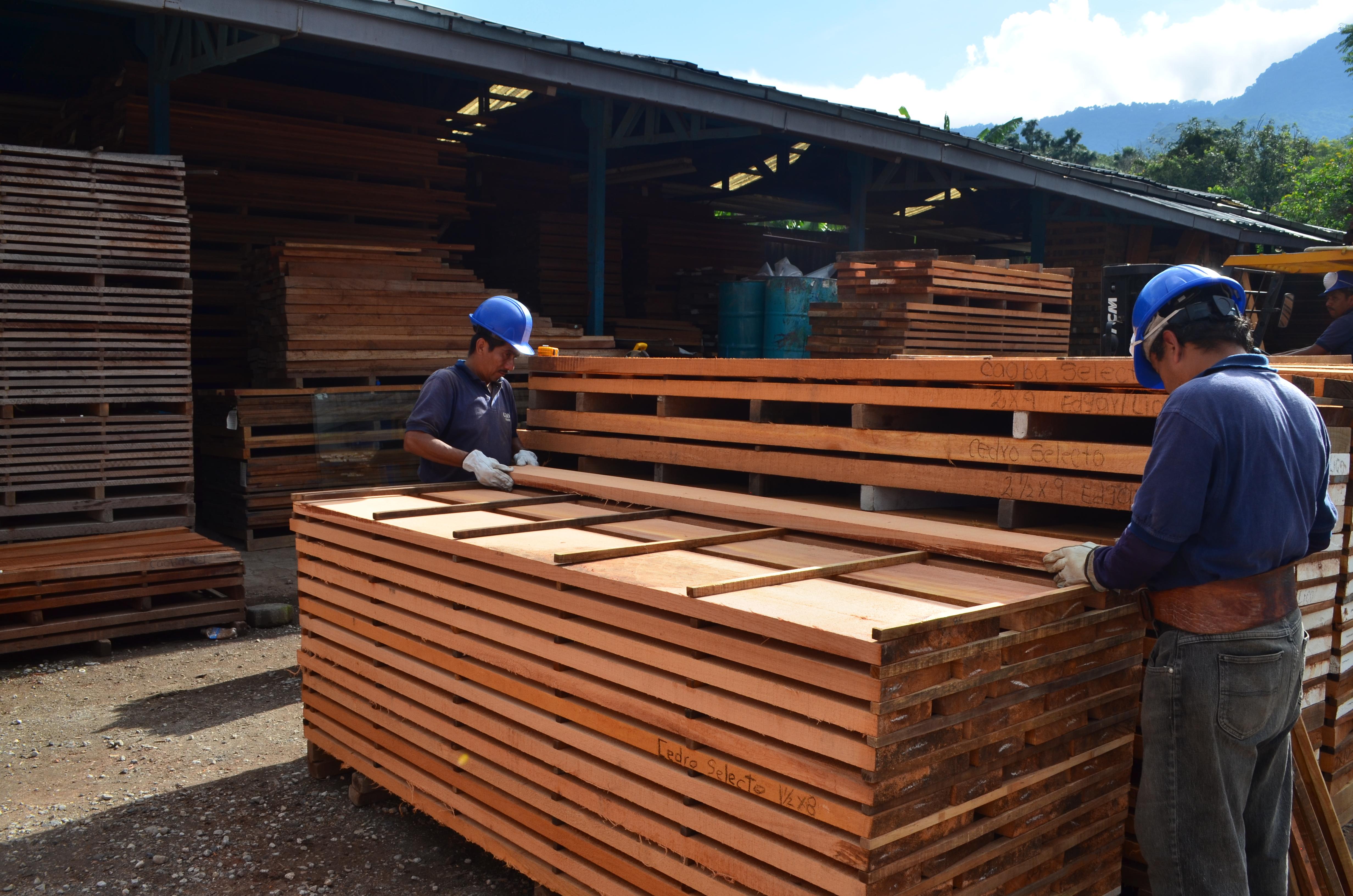 Las herramientas ayudarán a vincular la oferta con la demanda, desde el lado forestal a la parte de la transformación. (Foto Prensa Libre: Cortesía)