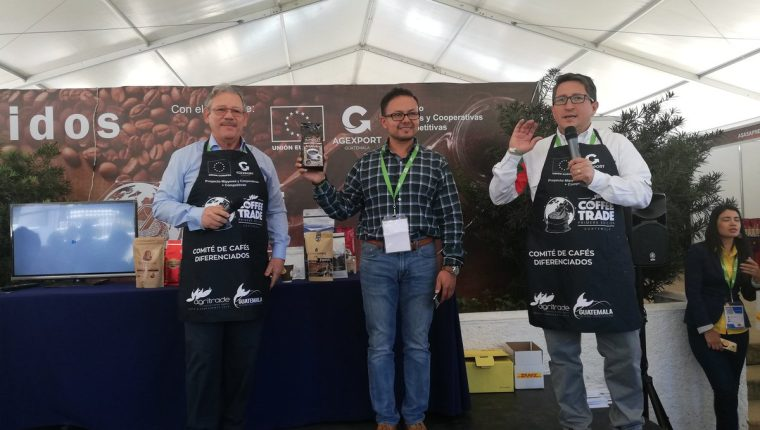 Café Apolo obtuvo el precio más alto en la primera subasta en el Coffee Trade 2019. (Foto, Prensa Libre: Agexport).