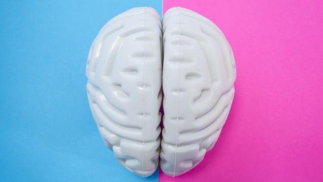 ¿Es cierto que hombres y mujeres tienen cerebros distintos y por eso ellos son más agresivos y ellas más empáticas?