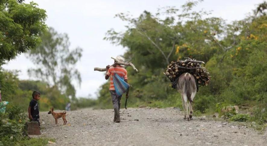 Familias del Corredor Seco han optado por buscar en EE. UU. una oportunidad de vida, luego que los últimos años la sequía les ha golpeado con fuerza y los ha dejado sin alimentos. (Foto Prensa Libre: Hemeroteca PL)