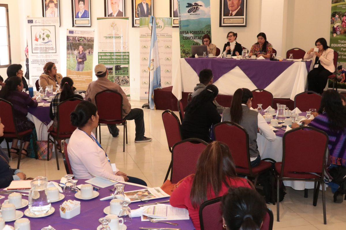 Mujeres del occidente son capacitadas para incidir en el desarrollo sostenible de recursos naturales