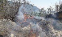 Unas 897 hectáreas de bosque han sido afectadas por el fuego en la última temporada de incendios. (Foto Prensa Libre: Conred).