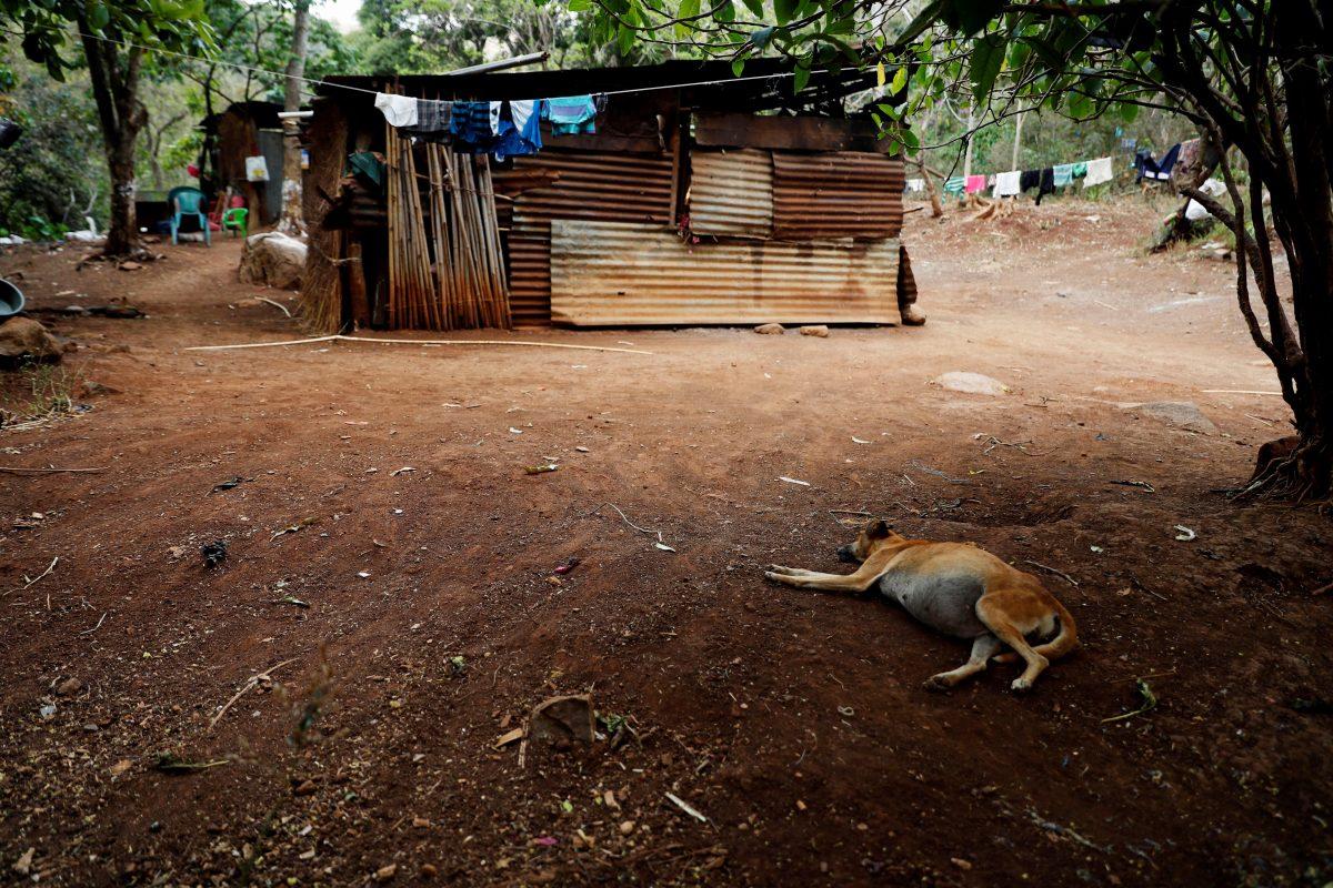 Estudio señala un alza de 14% el hambre en Centroamérica