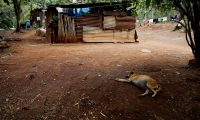 La disminución de la inversión publica y privada redunda en peores condiciones de vida para las personas. (Foto: Prensa Libre: EFE)