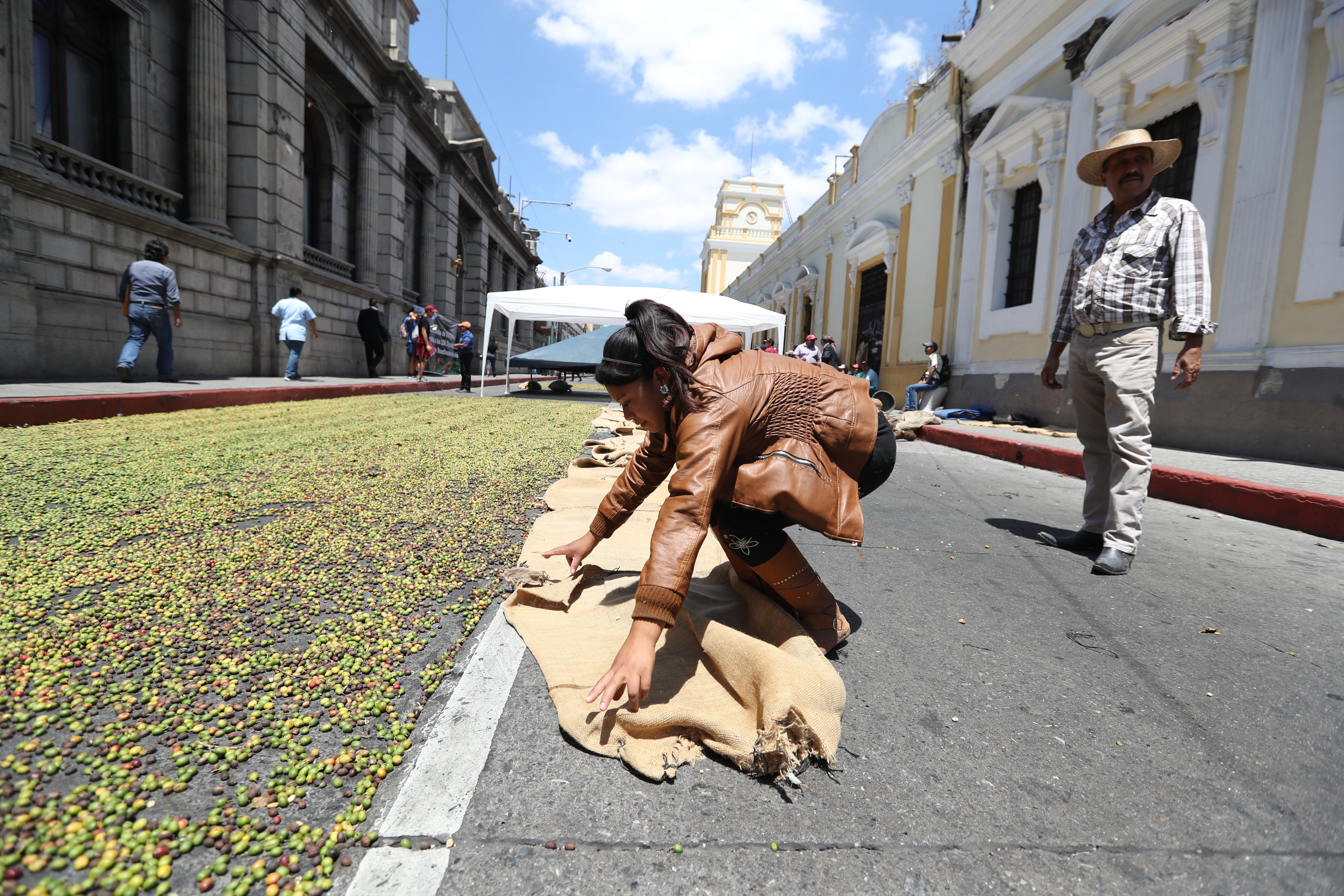 Mujeres que trabajan en el proceso de siembra y cultivo del café pidieron a diputados que continúen con el diálogo. Foto Prensa Libre: Óscar Rivas