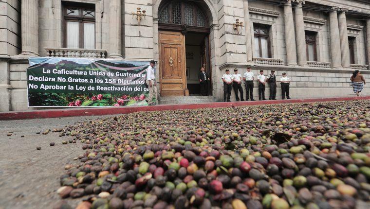 Caficultores señalan que no se irán del Congreso hasta que sea aprobada la iniciativa 5498. (Foto Prensa Libre: Hemeroteca PL)