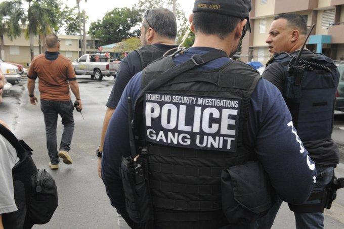 Agentes de Migración de EE. UU. durante un operativo.  (Foto. ICE)
