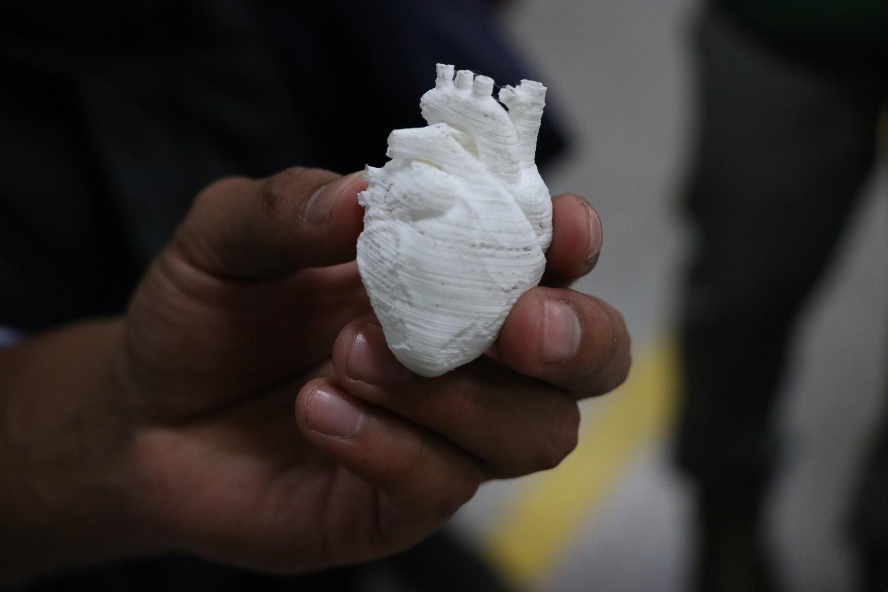 Este fue el prototipo de un corazón hecho con la impresora 3D fabricada por el estudiante quetzalteco. (Foto Prensa Libre: María Longo)