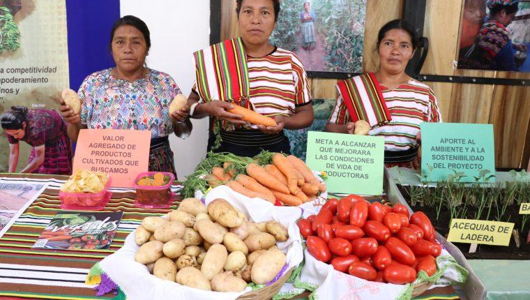 Agricultoras de San Juan Ostuncalco desean conquistar el mercado nacional e internacional. (Foto Prensa Libre; María Longo)