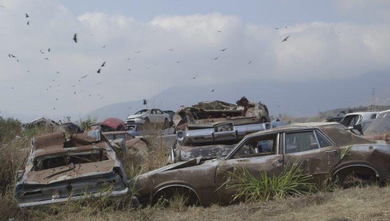 """Fotograma de la cinta """"El Silencio del Topo"""", la cual participa en el Festival de Cine de Panamá. (Foto Cortesía Prensa Libre: Anaïs Taracena)"""