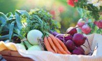 Los recursos que se requieren para producir vegetales son menores a los que requiere la carne (Foto Prensa Libre: servicios / Pexels).