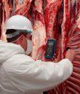 La intención es que Guatemala sea el canal de apertura de carne de Paraguay para Centroamérica. (Foto Prensa Libre:  paraguay.com)