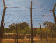 En la malla electrificada de la cárcel Pavón, en Fraijanes, falleció el reo Albin Armando Salguero López. (Foto Prensa Libre: Hemeroteca PL)