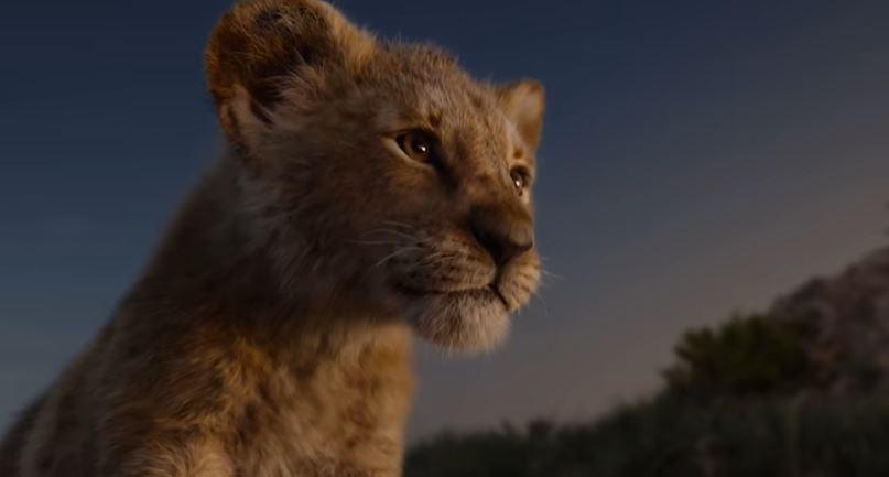 Así se ve Simba en la nueva película de The Lion King. (Foto Prensa Libre: YouTube)
