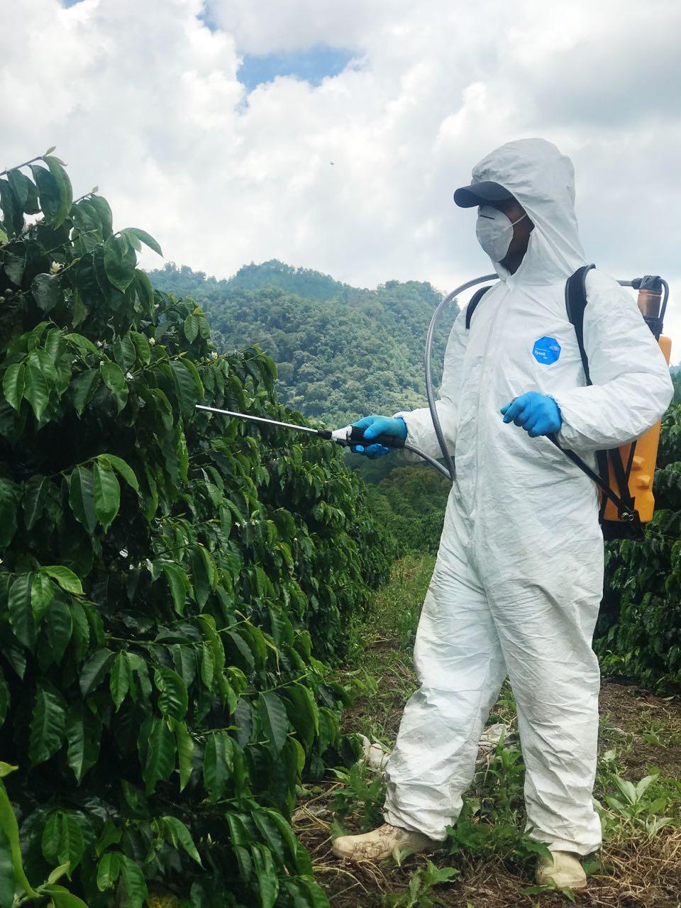 La empresa de capital guatemalteco Foragro inviritó US$300 en Panamá para la distribución de insumos agrícolas (Foto Prensa Libre: Cortesía)