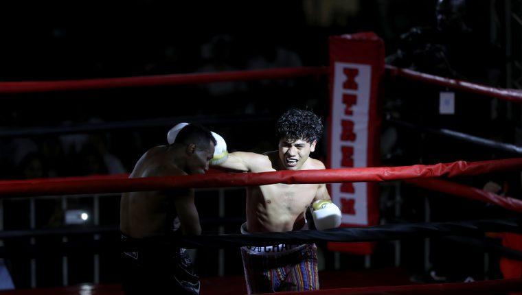 El pugilista petenero venció este sábado al nicaragüense Ricardo Mayorga por nocaut técnico (Foto Prensa Libre: Francisco Sánchez)