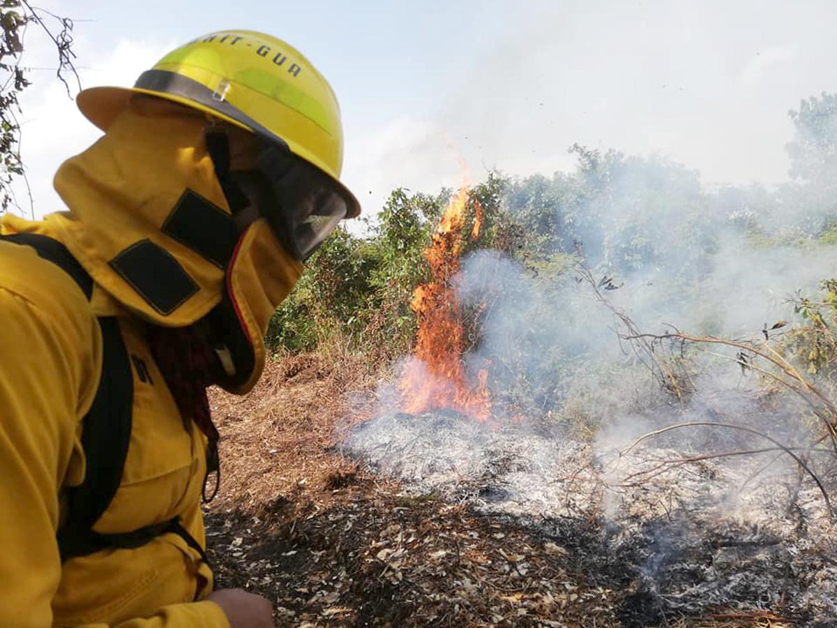Incendios forestales consumen más de tres mil hectáreas en el país
