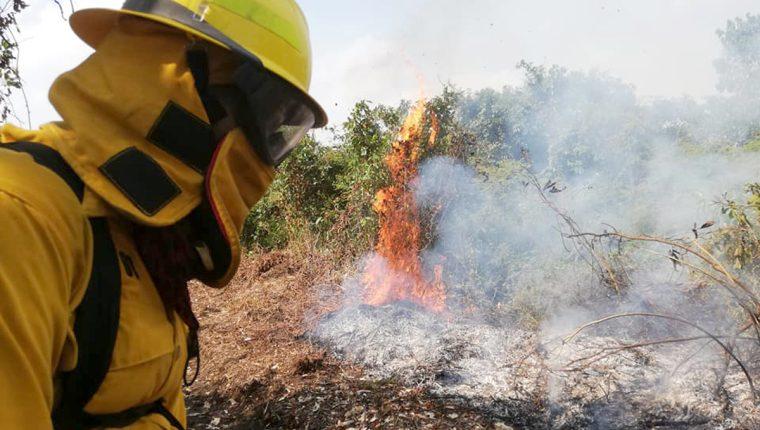 Un brigadista de la Conred intenta sofocar las llamas en Los Amates, Izabal. (Foto Prensa Libre: Dony Stewart)