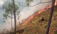 Los incendios forestales destruyen gran cantidad de bosques en Guatemala. (Foto Prensa Libre: Mario Morales)
