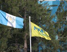 Las elecciones para integrantes de Comité Ejecutivo de la Fedefut están programadas para el próximo viernes 3 de mayo (Foto Prensa Libre: Hemeroteca PL)