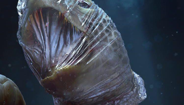 Con esta campaña se espera concientizar a los humanos del daño que se le hace a la vida marina por el mal uso de los plásticos