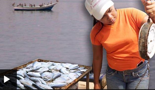 Cómo funciona el trueque e el mercado de Los Cocos, en Puerto La Cruz.