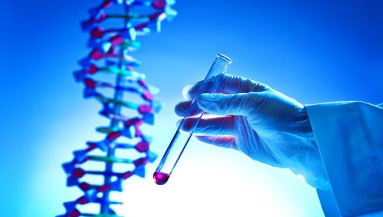 El mercado de los kits de ADN está valorado en unos US$118 millones, aunque con gigantescas proyecciones de crecimiento. (GETTY IMAGES)