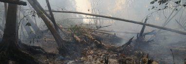 La restauración del bosque de mangle afectado por un incendio forestal en El Machón Guamuchal, Retalhuleu, llevará varios años. (Foto Prensa Libre: Cortesía Inab)