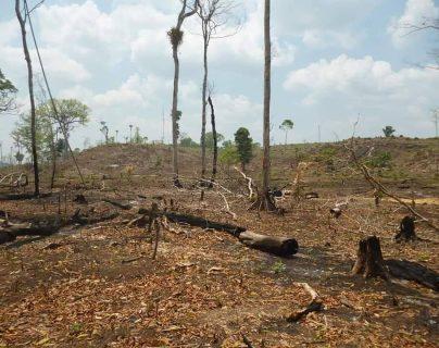 Cuatro días costó controlar el incendio forestal que afectó el área donde se ubica el monumento cultural Dos Pilas. (Foto Prensa Libre: El Gráfico de Oriente)