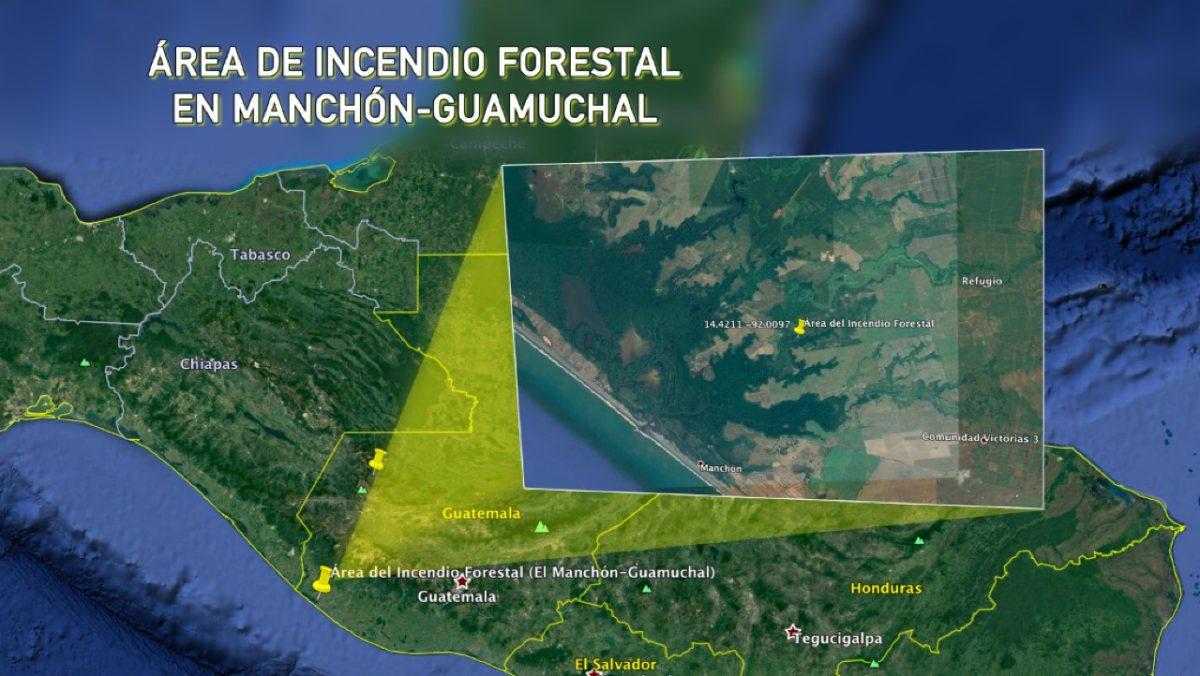 Así es la biodiversidad en Manchón-Guamuchal, donde un incendio forestal ha causado daños