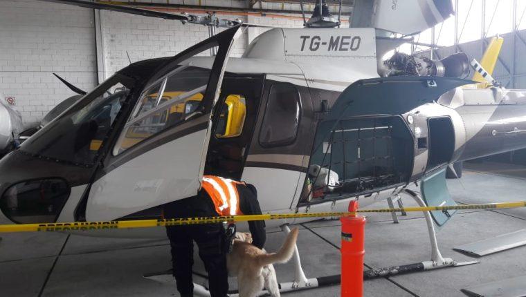 Agentes caninos participan en la inspección del helicóptero TG MEO, propiedad de Mario Estrada. (Foto Prensa Libre: MP)
