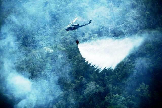 Los incendios forestales afectan los bosques del país. (Foto Prensa Libre: Conred).