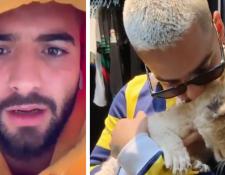 En el primer cuadro Maluma envía un mensaje a quienes lo critican por haber subido un video con una leona cachorra, en el segundo una captura de video del cantante con la cachorra. (Foto Prensa Libre: Instagram Maluma)