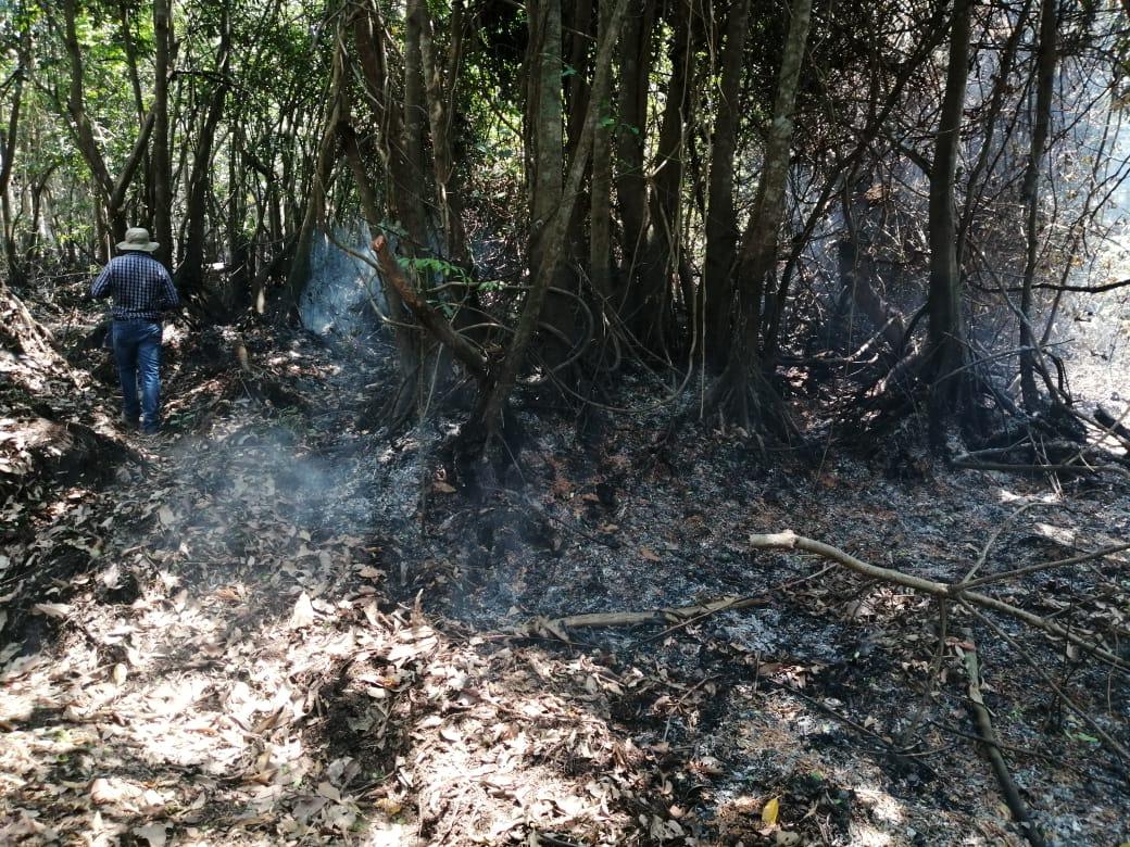 El fuego consume varias hectáreas de mangle en el Manchón Guamuchal, Retalhuleu. (Foto Prensa Libre: Rolando Miranda)