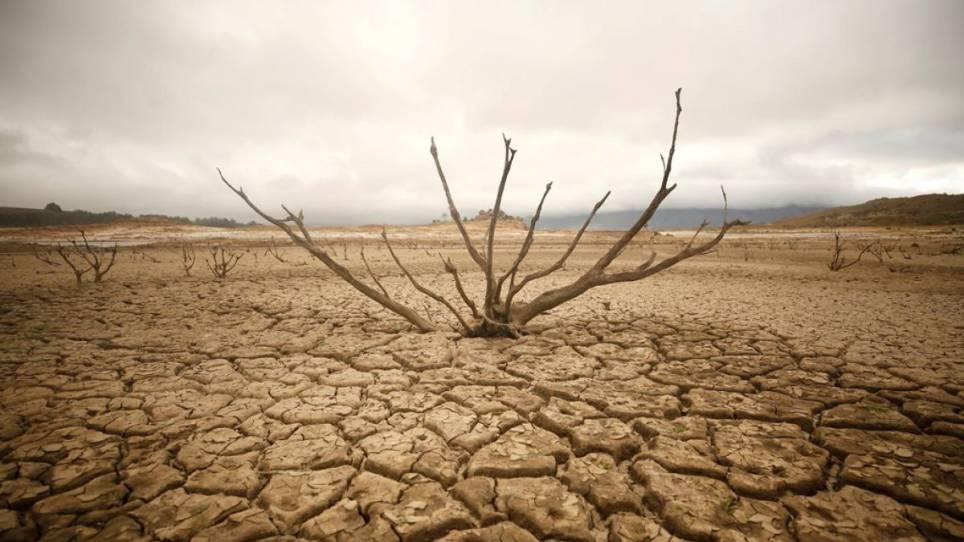 La sequía, escasez de alimento y agua alcanzan niveles más preocupantes, según expertos. (Foto Prensa Libre: tiempo.com)