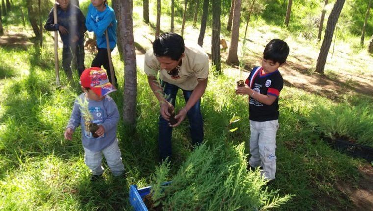Integrantes del Movimiento Familiar Cristiano de Quetzaltenango sembraron 500 arboles en junio del año pasado. (Foto Prensa Libre: María Longo)