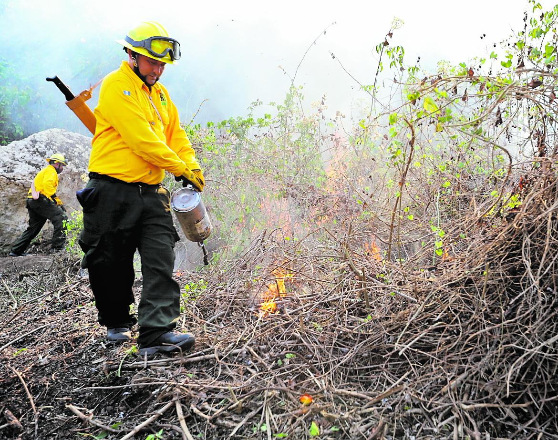 Seis incendios forestales continúan activos en Petén.(Hemeroteca PL)