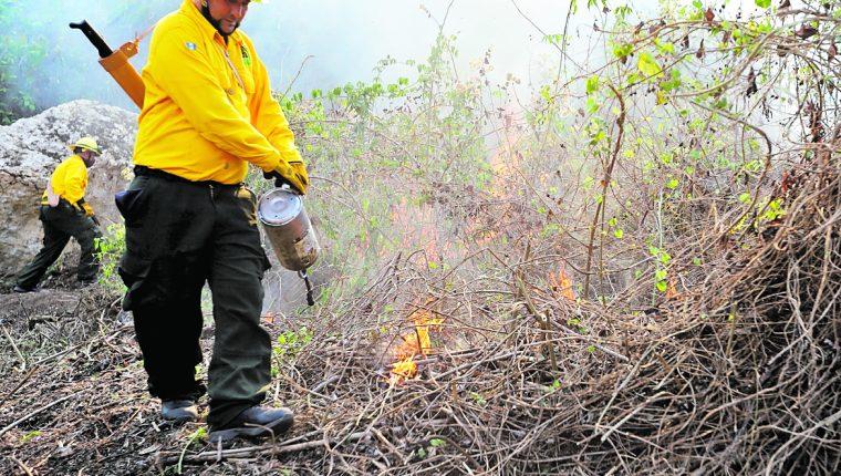 Los incendios forestales representan una amenaza para el país y aunque hay esfuerzos se necesita de más recursos para controlar la amenaza. (Hemeroteca PL)