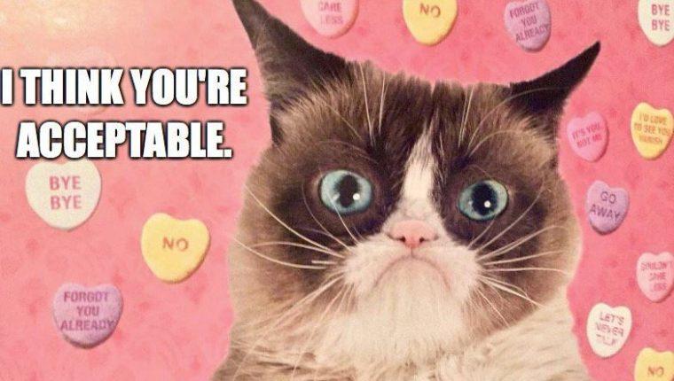 Las redes se han volcado a lamentar la muerte de Grumpy Cat. Foto Prensa Libre: @RealGrumpyCat)
