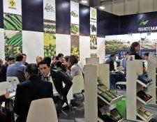 El programa de vinculación comercial consiste en una serie de capacitaciones sobre los mercados de Guatemala y República Dominicana. (Foto Prensa Libre: Hemeroteca)