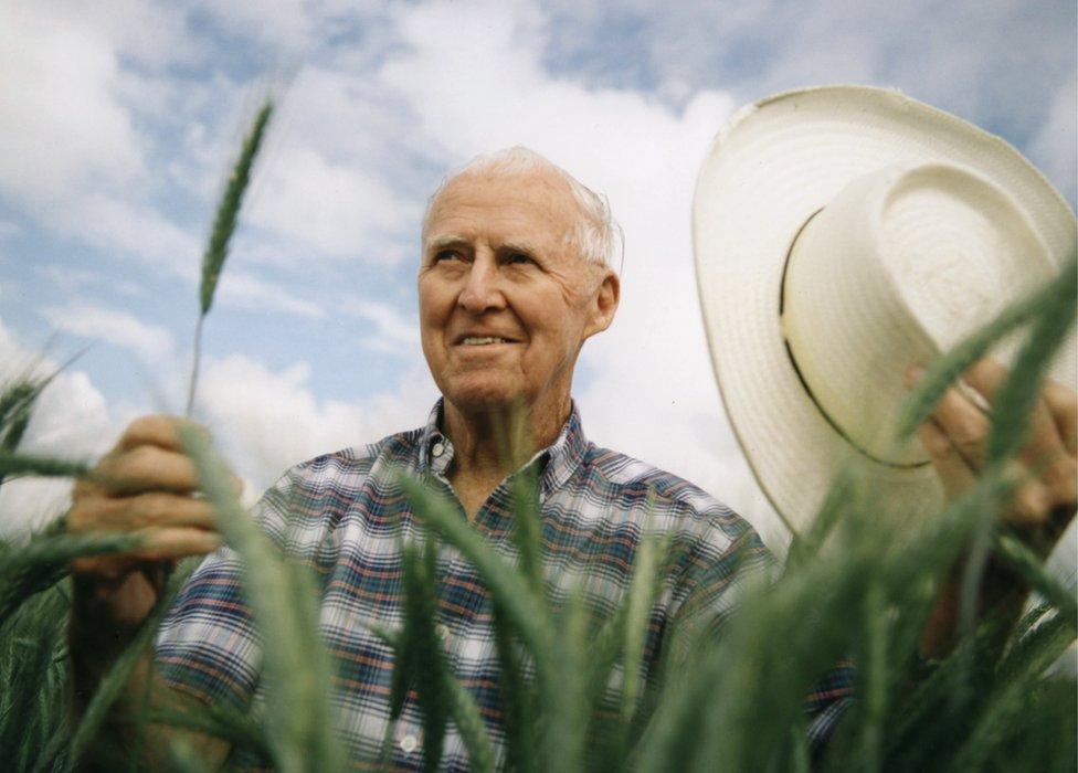 Norman Borlaug: el hombre que salvó a millones de personas de la hambruna y recibió el Nobel de la Paz por su trabajo en México