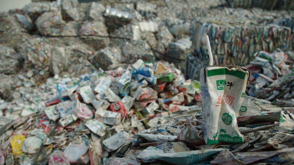 Cómo algunos países se convirtieron en el basurero del mundo y qué soluciones hay para para cambiarlo