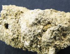 Los coprolitos o excrementos humanos fosilizados fueron hallados en una aldea neolítica en Turquía. Datan de 3.000 años antes de que se inventara el retrete.
