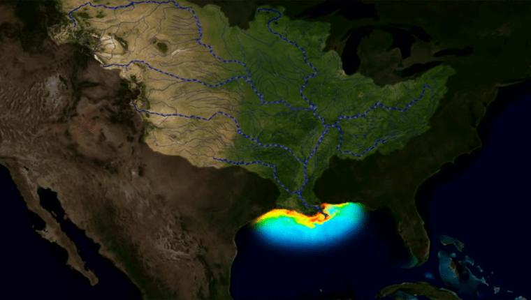 Los ríos transportan nitratos y fósforo de los fertilizantes, así como aguas residuales de ciudades, que son descargados al Golfo de México.