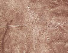 """Este dibujo había sido clasificado genéricamente como """"colibrí"""", pero representa una especie de colibrí llamada ermitaño, que vive en los bosques en las laderas de los Andes, según el estudio. GETTY IMAGES"""