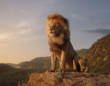 La nueva versión de El Rey León se estrenará el próximo 19 de julio. (Foto Prensa Libre: Disney).