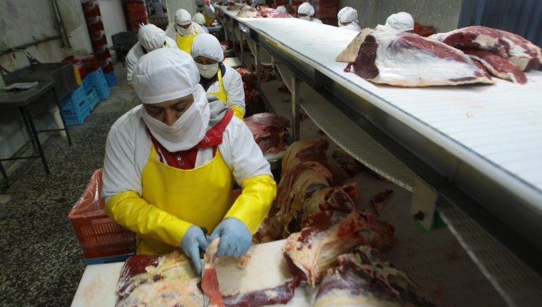 Argentina tiene interés de abastecer de carne bovina a Guatemala, sin embargo, no se puede realizar por medidas sanitarias. (Foto Prensa Libre: Hemeroteca)