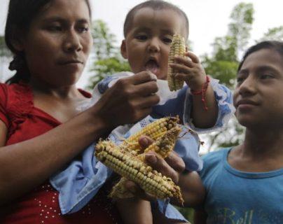 La desnutrición aguda podría agravarse debido a la pandemia del coronavirus. (Foto Prensa Libre: Hemeroteca PL)